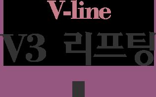 V3 리프팅