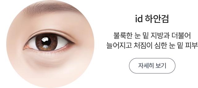 id 하안검